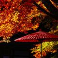 Photos: 『日本の秋。。。』 ~奈良県 談山神社~
