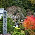 写真: 大池禅寺
