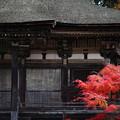 写真: 『暦秋。。。』