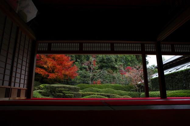 Photos: 『秋画』