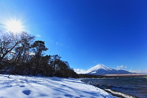 Photos: 『歳寒松柏』 ~2014年 元旦 山中湖~