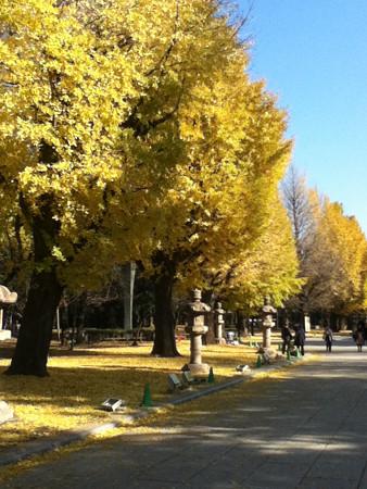 20121213靖国神社