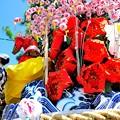 Photos: 盛岡の夏祭り