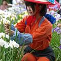 花摘み娘(1)