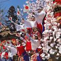 Photos: 祭り日和