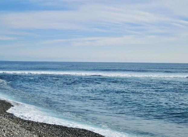 土佐湾の波模様
