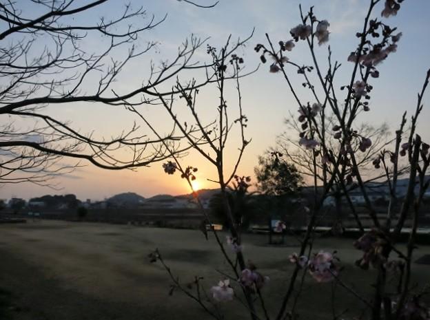 陽跡鏡川 ・96