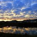 Photos: 湖面に映える
