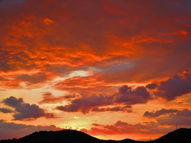 鏡川の夜明け・21