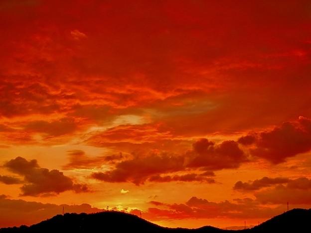 鏡川の夜明け・6