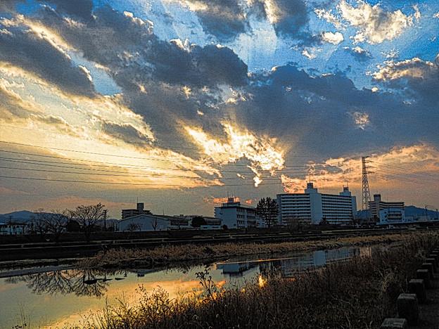 鏡川の朝.20