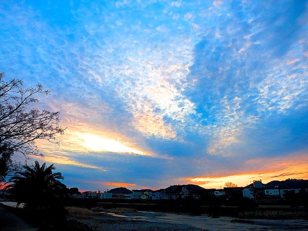 鏡川の朝.14