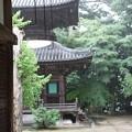雨の多宝塔