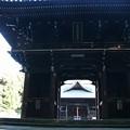 大きな山門(随神門)