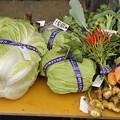 11月9日朝、市民まつり(農業祭)出展品の収穫?