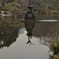 鶴の噴水?