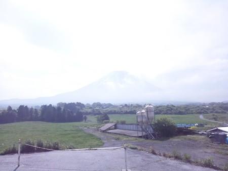富士山(朝霧)