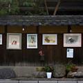 写真: 路傍の美術館