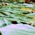水流 落ち葉のある風景