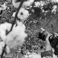 Photos: 撮るを撮る