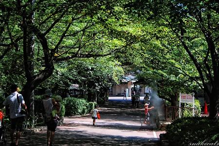 「家族の空間」 王子動物園 - 兵庫