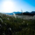 Photos: 幻想野