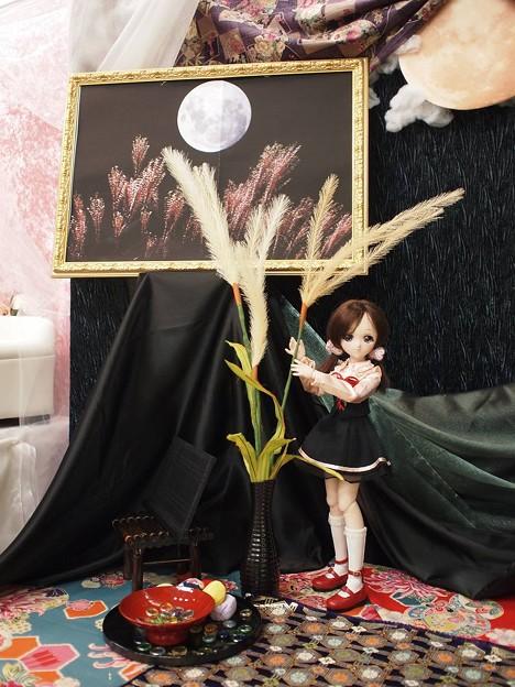 Photos: お月様とモエちゃん