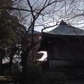 Photos: 墓参り3
