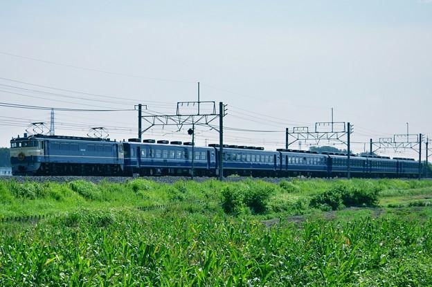 【9735レ】EF65-501+12系「高崎線130周年記念号」