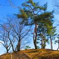 小高い丘の散歩道