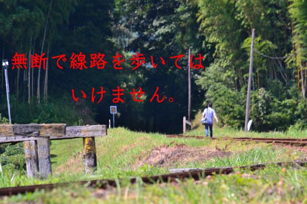 行こうぜ 遥かレールの彼方へ・・・って、オィ!(`д´#)!