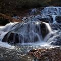 魚止めの滝