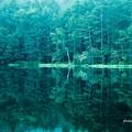 写真: 神秘の池