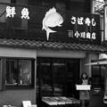 Photos: さば寿司