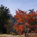 Photos: 鹿ノ瀬駅からの木曽御嶽山