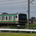 IMGP0189