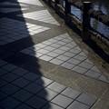 写真: 遊歩道