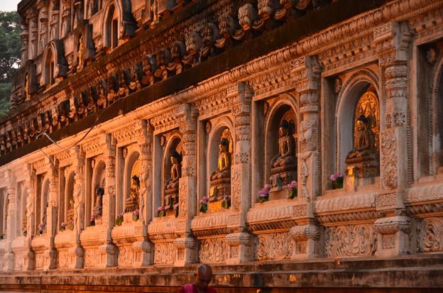 マハーボディー寺院。夕日に照らされて美しい