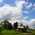 写真: 少し郊外に出ればのどかな田園風景が広がる