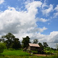 Photos: 少し郊外に出ればのどかな田園風景が広がる