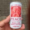 Photos: ふるさと全国県人会まつり_81:桃のジュース(山梨県)