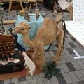 Photos: 名古屋まつり:ソーシャルタワーマーケット_08