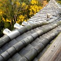 写真: 犬山城:天守閣最上階からの眺め - 11