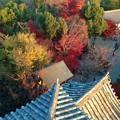 写真: 犬山城:天守閣最上階からの眺め - 15