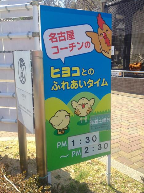 名古屋市農業センター:しだれ梅まつり - 083