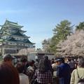 写真: 名古屋城春まつり - 052