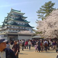 写真: 名古屋城春まつり - 054