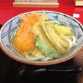 博多うどん 木村屋:天ぷらうどん