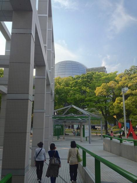 Photos: 名古屋市美術館から見た名古屋市科学館ブラザーアースの頭頂部 - 1