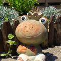 写真: 可愛いカエルの陶像 - 2